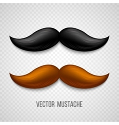 Brown black isolated mustaches set vector image