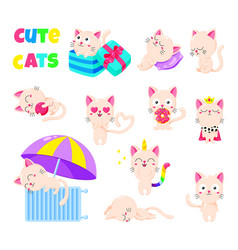 collection of cute cats doodle character vector image