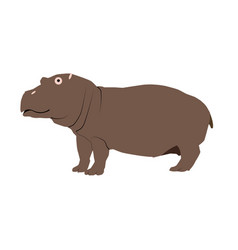 color of a hippopotamus isolated vector image