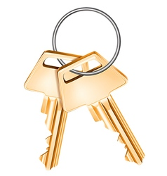 Golden keys vector