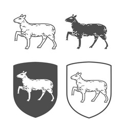 heraldic shields with lamb vector image