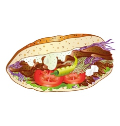Kebab bread salad vector