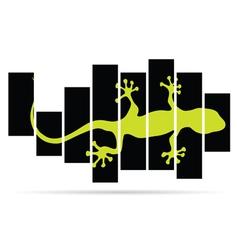 salamander lizard color vector image