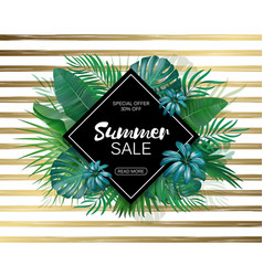 Sale rhombus summer sale tropical leaves frame on vector