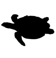 Silhouette beautiful sea turtle on a white vector