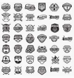 sports logos badges vector image