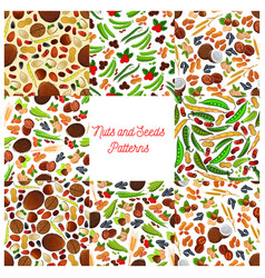 nuts and seeds patterns set vector image