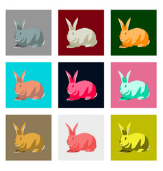 set of in flat style rabbit vector image