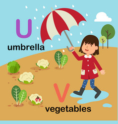 alphabet letter u-umbrella v-vegetables vector image vector image