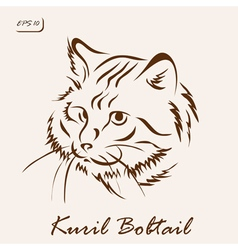 Kuril Bobtail vector image vector image