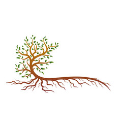 a symbol a stylized tree with roots vector image