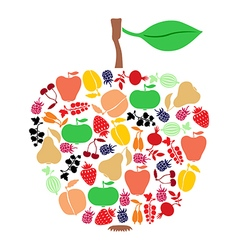 Apple on fruits vector
