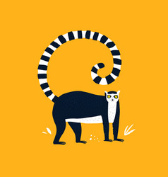 ring tailed lemur hand drawn vector image