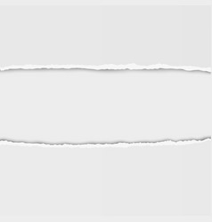 torn paper with ripped edges hole in paper vector image