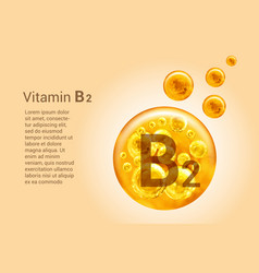 Vitamin b2 baner with images golden balls with vector