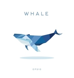 Whale lowe roles polygons vector
