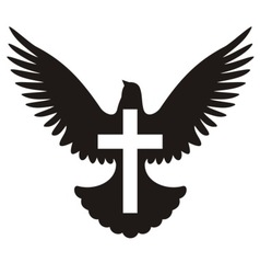 dove with cross symbol vector image