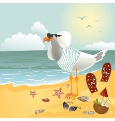 Seagull on the beach looking through binoculars vector image