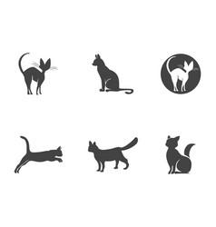 cat breeds cute pet animal set vector image