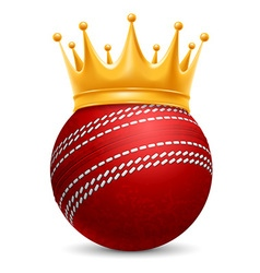 Cricket ball in crown vector image vector image