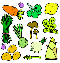 Doodle of vegetable style set vector