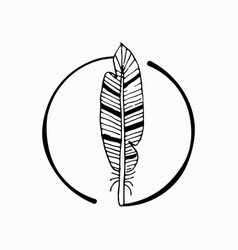 feather with abstract drawing vector image