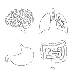 Isolated object anatomy and organ symbol vector