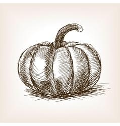 Pumpkin hand drawn sketch style vector image vector image
