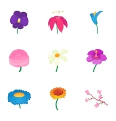 Types of flowers icons set cartoon style vector image