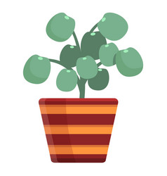 Cozy home flower pot icon cartoon style vector