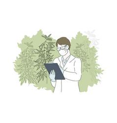 Herbal alternative medicine concept vector