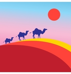 Many of camels vector