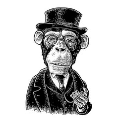 Monkey gentleman holding a watch and dressed hat vector