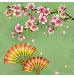 Vintage Japanese background with sakura and fans vector image vector image
