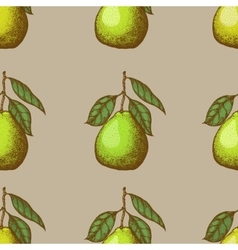 seamless pattern with pomelo vector image vector image