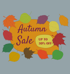 autumn seasonal sale text autumn sale 30 discount vector image