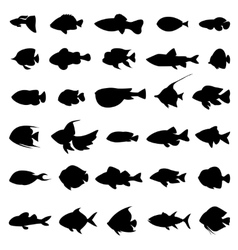 Fish silhouettes black on white vector