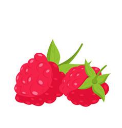 Raspberry fruit berry icon vector