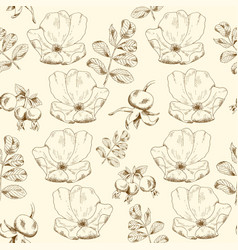 seamless sketch briar template background vector image vector image