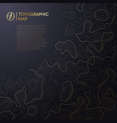 Abstract topographic map design with space for vector