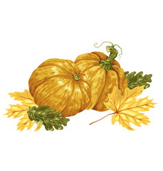 decorative element in with pumpkins and autumn vector image