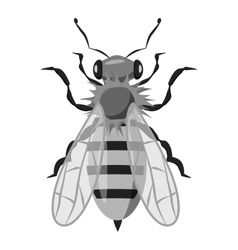 Insects bee icon gray monochrome style vector image