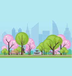 spring summer public city park with sakura trees vector image