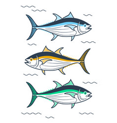 tuna linear style vector image