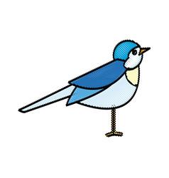 bird nature animal flight wildlife image vector image vector image