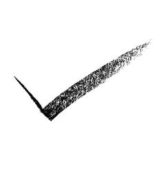 Check mark vector image vector image