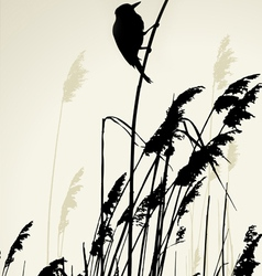 A bird sitting on the cane during the summer day vector image