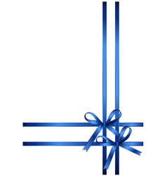 beautiful gift bows isolated on white background vector image