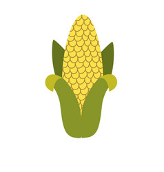 Delicious cob to eat organic food vector