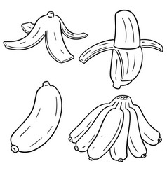 set of banana vector image